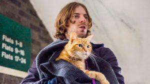 A spasso con Bob (2016) – Trailer e recensione